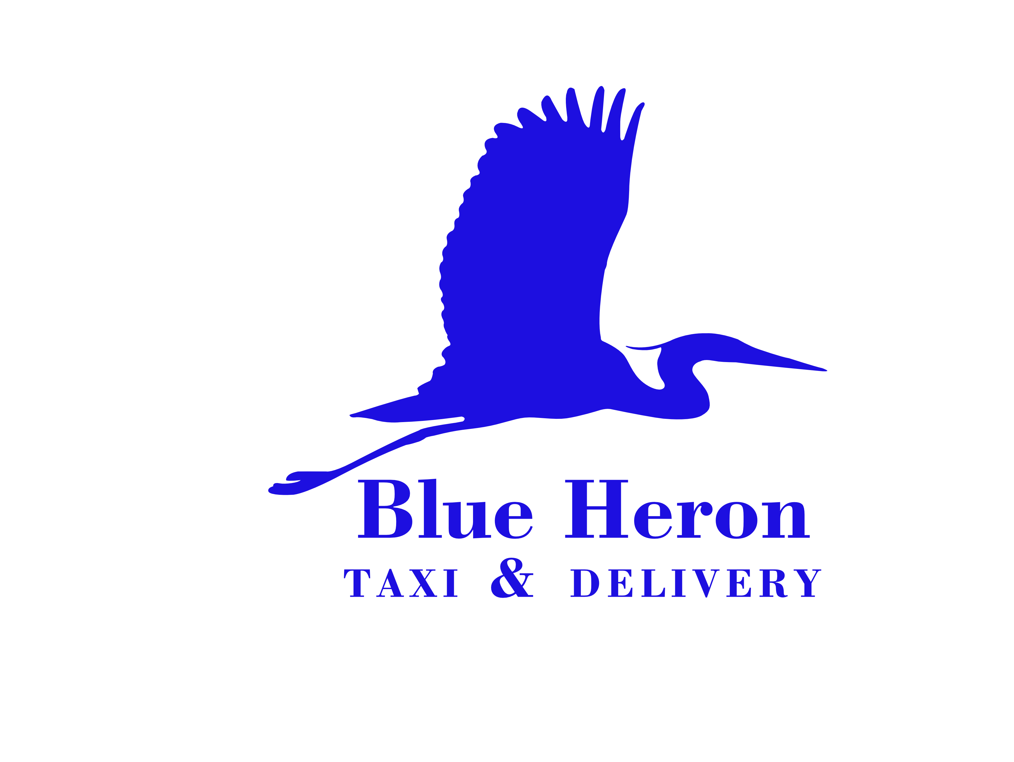Blue Heron Taxi and Delivery logo